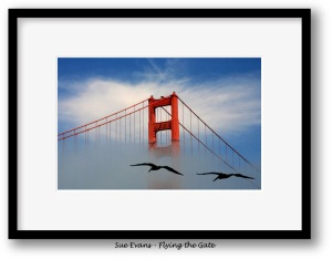 Flying the Gate, a photograph by Sue Evans, featured artist for June